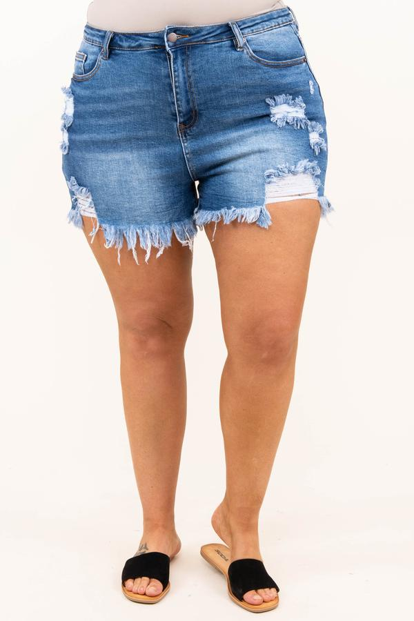 bottoms, shorts, blue, distressed